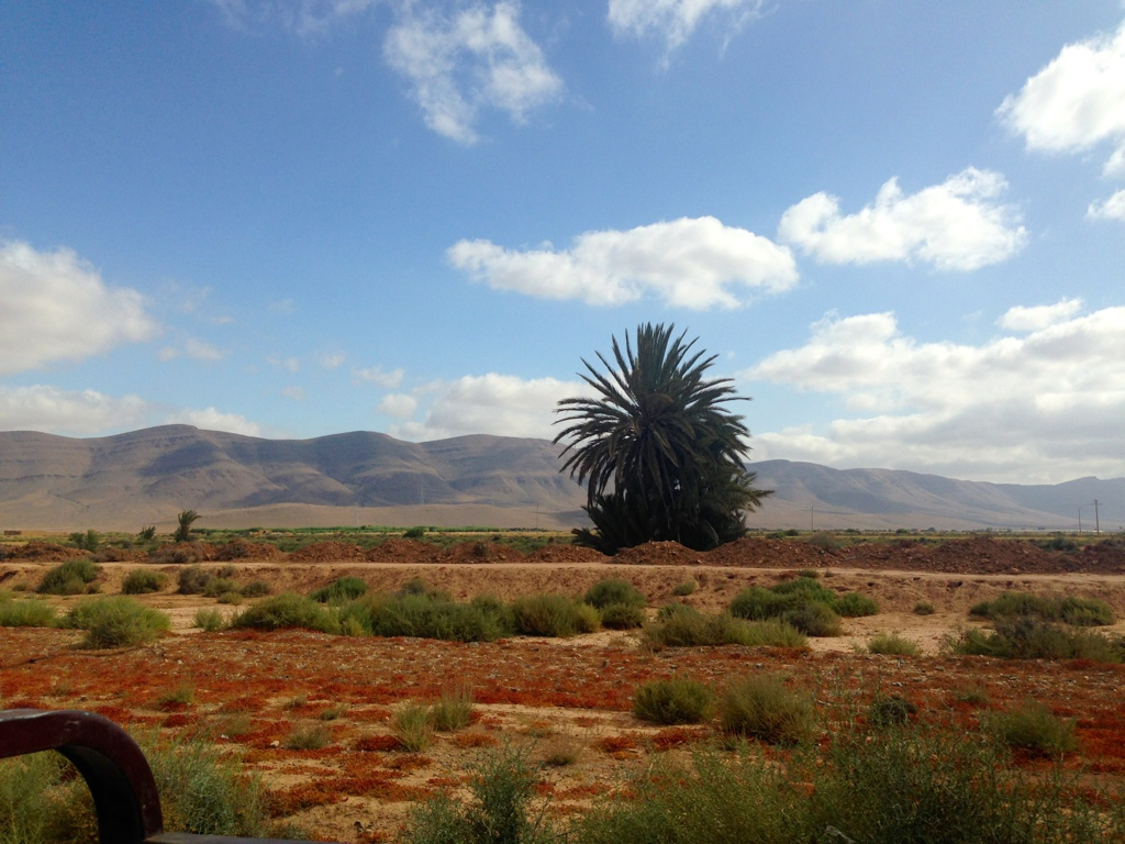 my love affair with morocco