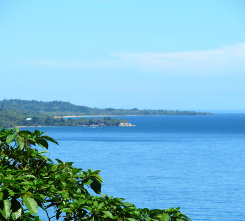 the-view-from-the-top-of-bastimentos-island